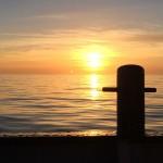 Seebestattung Scheveningen