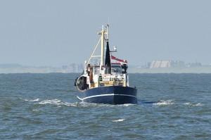 Marion Aqua Omega asverstrooiing IJmuiden (7)