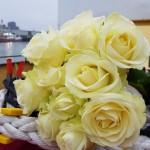 Bloemengroet-van-Aqua-Omega-die-aan-het-einde-op-de-asverstrooiingslocatie-zal-worden-achtergelaten